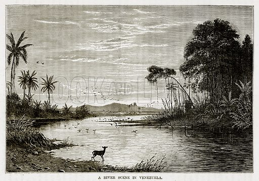 A River Scene in Venezuela. Illustration from The Countries of the World by Robert Brown (Cassell, c 1890).