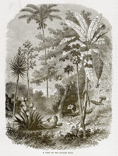 A view on the Spanish Main. Illustration from The Countries of the World by Robert Brown (Cassell, c 1890).