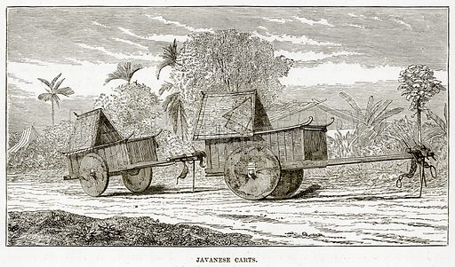 Javanese Carts. Illustration from The Countries of the World by Robert Brown (Cassell, c 1890).