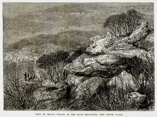 View of Mount Wilson, in the Blue Mountains, New South Wales. Illustration from The Countries of the World by Robert Brown (Cassell, c 1890).