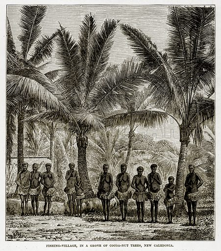Fishing-Village, in a Grove of Cocoa-Nut Trees, New Caledonia. Illustration from The Countries of the World by Robert Brown (Cassell, c 1890).
