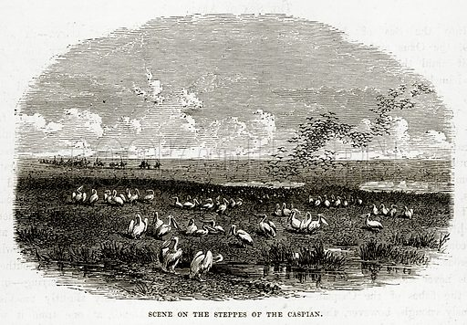 Scene on the Steppes of the Caspian. Illustration from The Countries of the World by Robert Brown (Cassell, c 1890).