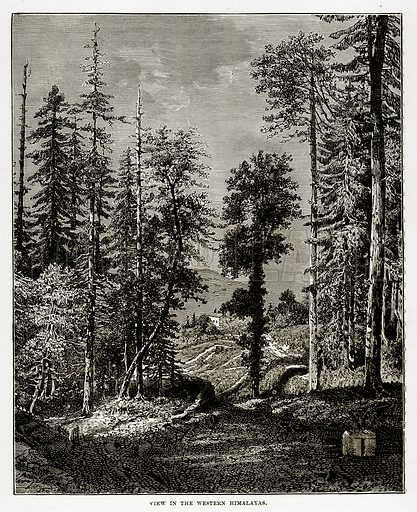 View in the Western Himalayas. Illustration from The Countries of the World by Robert Brown (Cassell, c 1890).