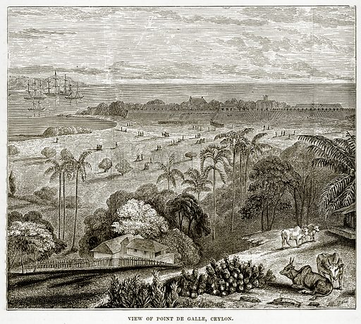 View of Point De Galle, Ceylon. Illustration from The Countries of the World by Robert Brown (Cassell, c 1890).