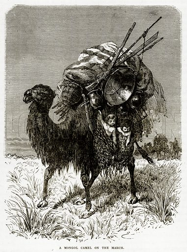 A Mongol Camel on the March. Illustration from The Countries of the World by Robert Brown (Cassell, c 1890).