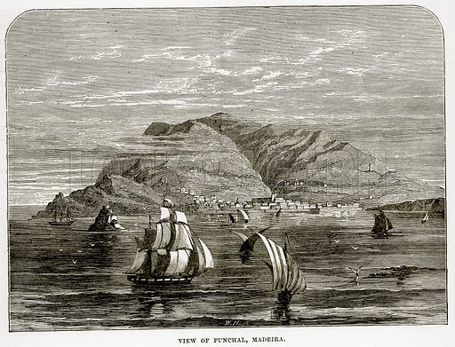View of Funchal, Madeira. Illustration from The Countries of the World by Robert Brown (Cassell, c 1890).