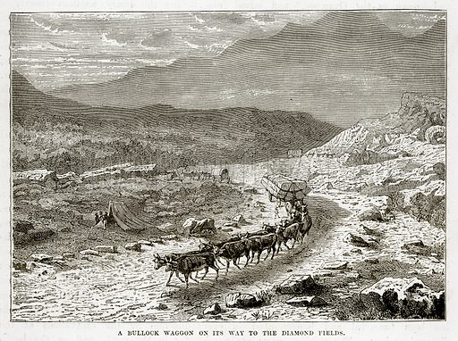 A Bullock Waggon on its way to the Diamond Fields. Illustration from The Countries of the World by Robert Brown (Cassell, c 1890).