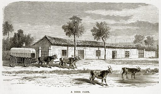 A Boer Farm. Illustration from The Countries of the World by Robert Brown (Cassell, c 1890).