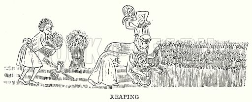 Reaping. Illustration from A Short History of the English People by J R Green (Macmillan, 1892).