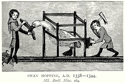 Swan Hopping, AD 1338 – 1344. Illustration from A Short History of the English People by JR Green (Macmillan, 1892).