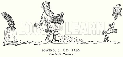 Sowing, c AD 1340. Illustration from A Short History of the English People by JR Green (Macmillan, 1892).