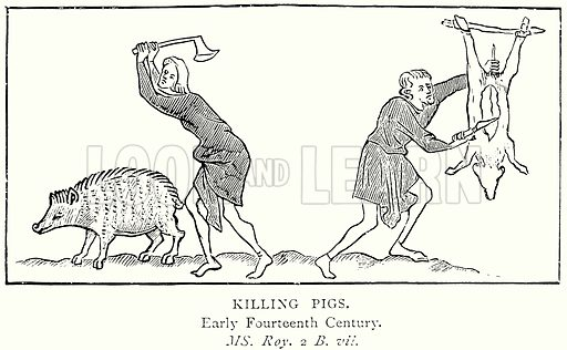 Killing Pigs. Illustration from A Short History of the English People by J R Green (Macmillan, 1892).