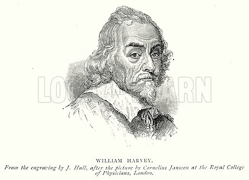 William Harvey. Illustration from A Short History of the English People by J R Green (Macmillan, 1892).