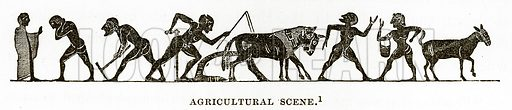 Agricultural Scene. Illustration from History of Greece by Victor Duruy (Boston, 1890).