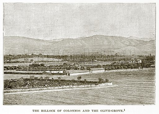 The Hillock of Colonnos and the Olive-Grove. Illustration from History of Greece by Victor Duruy (Boston, 1890).