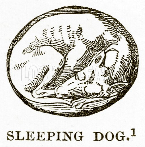 Sleeping Dog. Illustration from History of Greece by Victor Duruy (Boston, 1890).