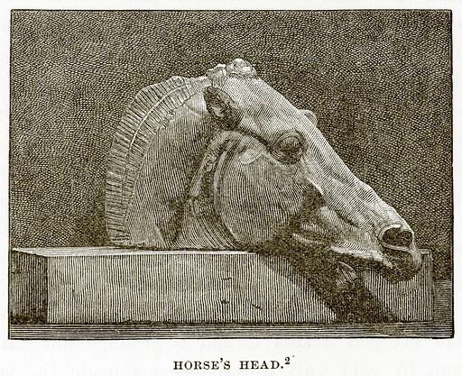 Horse's Head. Illustration from History of Greece by Victor Duruy (Boston, 1890).