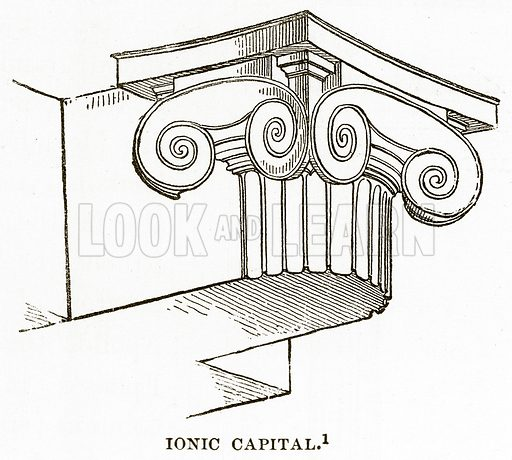 Ionic Capital. Illustration from History of Greece by Victor Duruy (Boston, 1890).