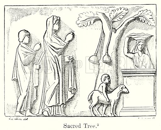 Sacred Tree. Illustration from History of Rome by Victor Duruy (Kegan Paul, Trench & Co, 1884).