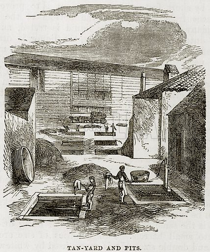 Tan-Yard and Pits. Illustration from The Boy's Book of Industrial Information by Elisha Noyce (Ward & Lock, 1859).