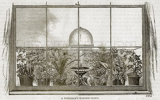 A Workman's Window-Blind. Illustration in The National Magazine Vol 1 (W Kent & Co, 1859).