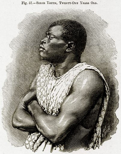 Serer Youth, Twenty-One Years Old. Illustration from Africa and its Inhabitants by Elisee Reclus (Virtue, c 1895).