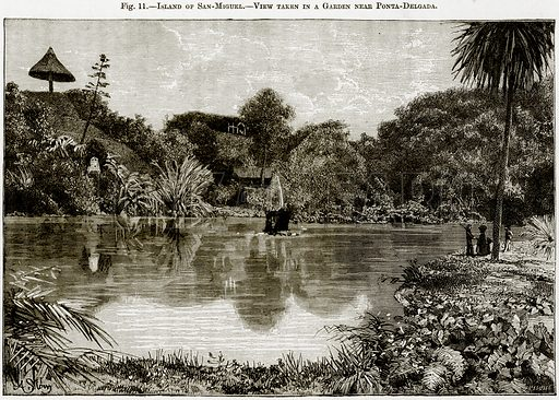 Island of San-Miguel – View taken in a Garden near Ponta-Delgada. Illustration from Africa and its Inhabitants by Elisee Reclus (Virtue, c 1895).