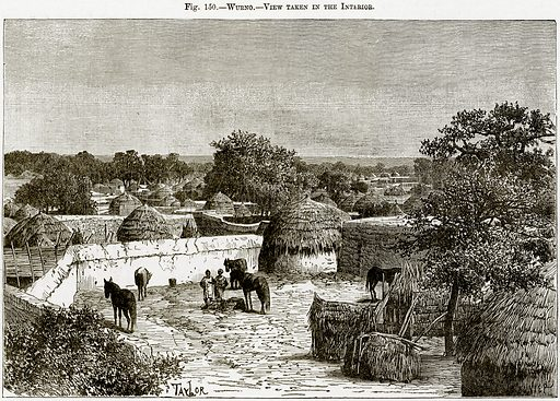 Wurno – View taken in the Interior. Illustration from Africa and its Inhabitants by Elisee Reclus (Virtue, c 1895).