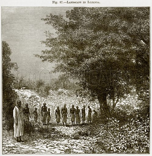 Landscape in Lujenda. Illustration from Africa and its Inhabitants by Elisee Reclus (Virtue, c 1895).