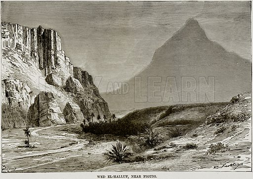 Wed el-Halluf, near Figuig. Illustration from Africa and its Inhabitants by Elisee Reclus (Virtue, c 1895).