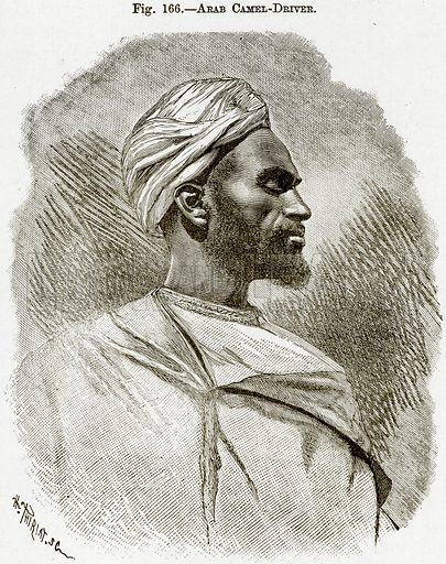 Arab Camel-Driver. Illustration from Africa and its Inhabitants by Elisee Reclus (Virtue, c 1895).