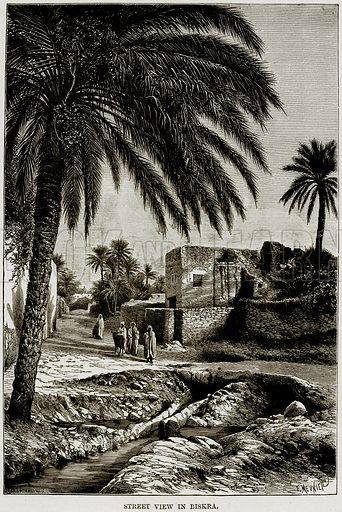 Street View in Biskra. Illustration from Africa and its Inhabitants by Elisee Reclus (Virtue, c 1895).