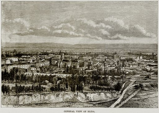 General View of Blida. Illustration from Africa and its Inhabitants by Elisee Reclus (Virtue, c 1895).
