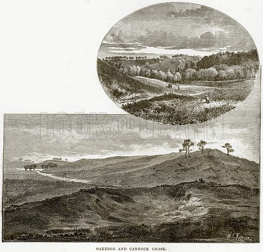 Oakedge and Cannock Chase. Illustration from Our Own Country (Cassell, c 1890).