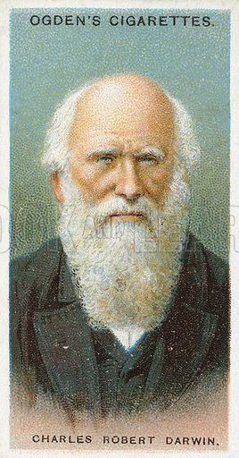 Charles Robert Darwin. Illustration from Ogden's cigarette card series on Leaders of Men issued in 1924.
