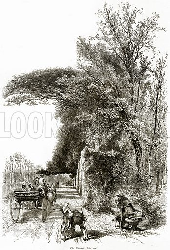 The Cascine, Florence. Illustration from Picturesque Europe (Cassell, c 1880).