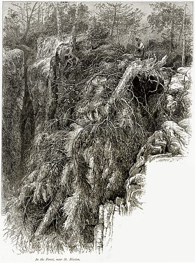 In the Forest, near St. Blasien. Illustration from Picturesque Europe (Cassell, c 1880).