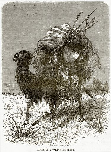 Camel of a Tartar Emigrant. Illustration from Illustrated Travels edited by HW Bates (Cassell, c 1880).