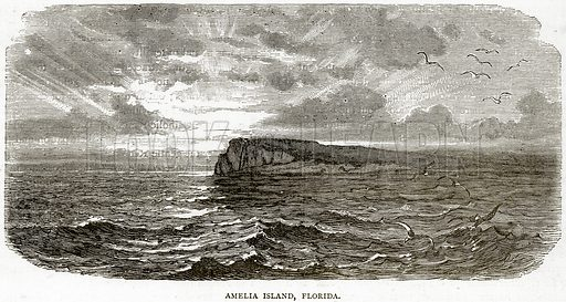 Amelia Island, Florida. Illustration from Illustrated Travels edited by HW Bates (Cassell, c 1880).