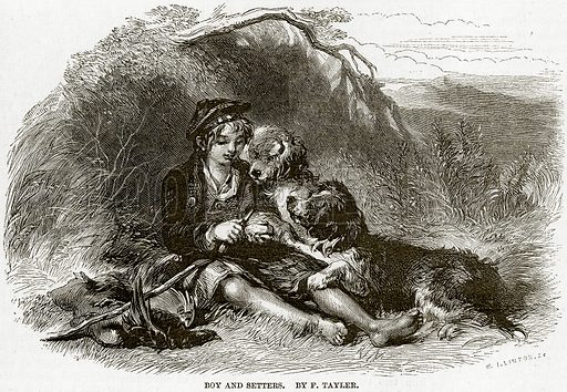 Boy and Setters. By F Tayler. Illustration from The National Magazine (Kent, 1860).
