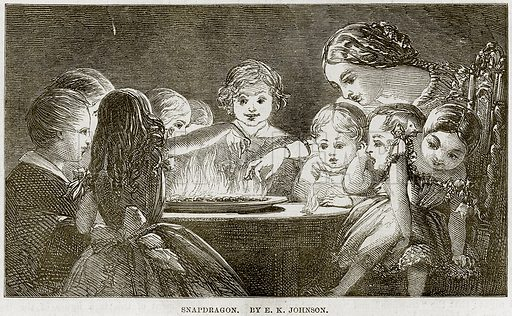 Snapdragon. By EK Johnson. Illustration from The National Magazine (Kent, 1860).
