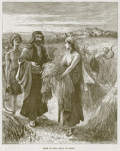 Ruth in the Field of Boaz. Illustration from The Child's Bible (Cassell, c 1880).