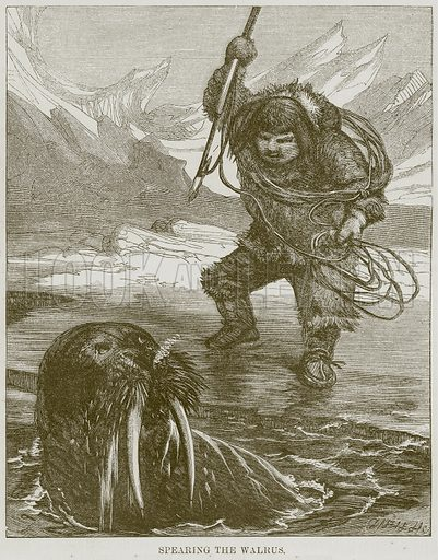 Spearing the Walrus. Illustration for The Natural History of Man by J G Wood (George Routledge, 1870).