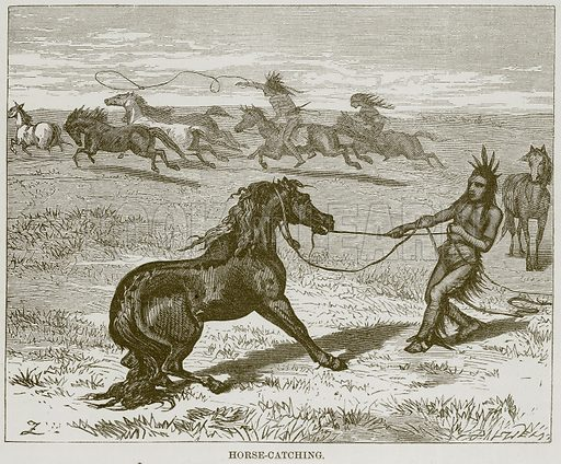 Horse-Catching. Illustration for The Natural History of Man by J G Wood (George Routledge, 1870).