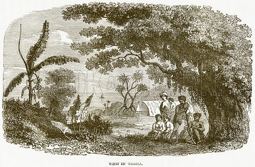 View in Tanna. Illustration from Notable Voyagers by William Kingston (George Routledge, 1885).