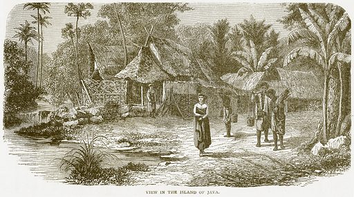 View in the Island of Java. Illustration from Notable Voyagers by William Kingston (George Routledge, 1885).
