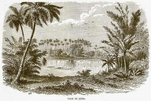 View in Cuba. Illustration from Notable Voyagers by William Kingston (George Routledge, 1885).