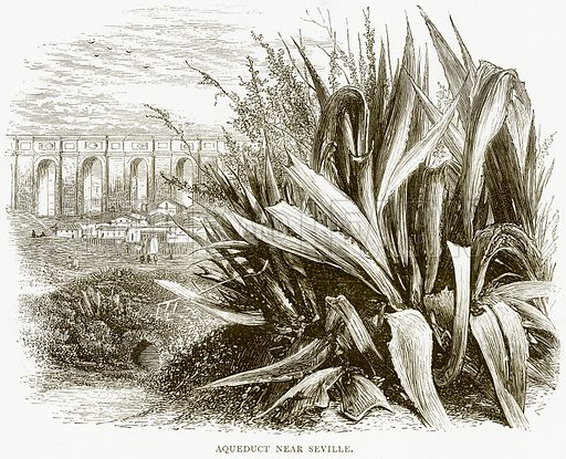 Aqueduct near Seville. Illustration from Spanish Pictures (Religious Tract Society, c 1875).