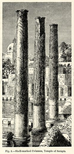 Shell-Marked Columns, Temple of Serapis. Illustration for The World As It Is by George Chisholm (Blackie, 1885).