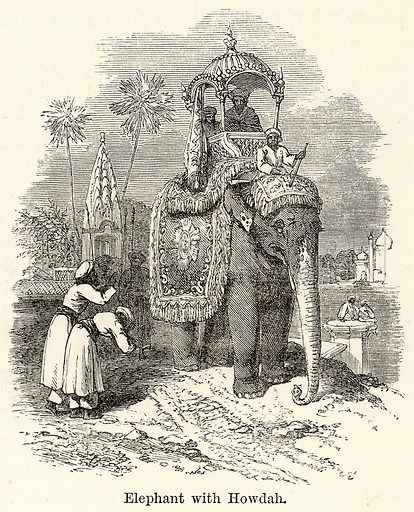 Elephant with Howdah. Illustration for The World As It Is by George Chisholm (Blackie, 1885).